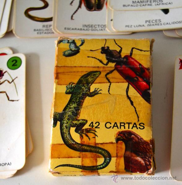 Barajas de cartas: BARAJA INFANTIL * 42 CARTAS * EL JUEGO DE LA NATURALEZA * COMPLETA - Foto 3 - 42661107