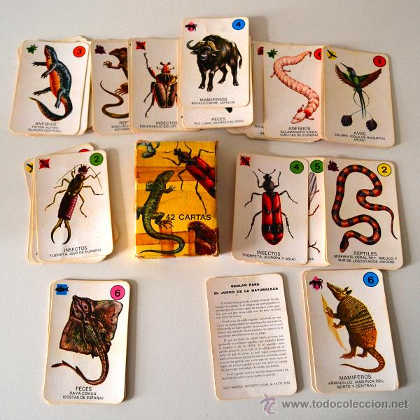 Barajas de cartas: BARAJA INFANTIL * 42 CARTAS * EL JUEGO DE LA NATURALEZA * COMPLETA - Foto 4 - 42661107