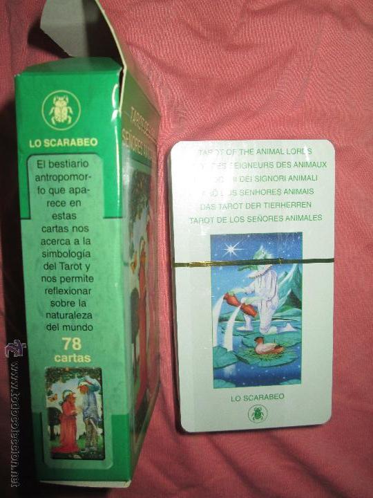 Barajas de cartas: tarot DE LOS SEÑORES ANIMALES - lo scarabeo - italia. en caja precintado - 78 cartas - Foto 6 - 47382847