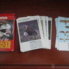 Barajas de cartas: GUIA DE RAPACES IBERICAS J L RODRIGUEZ NATURA. Lote 114866496