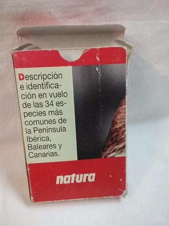 Barajas de cartas: BARAJA DE CARTAS GUIA DE RAPACES IBÉRICAS - POR J.L. RODRÍGUEZ - NATURA - COMPLETA - Foto 4 - 57994446