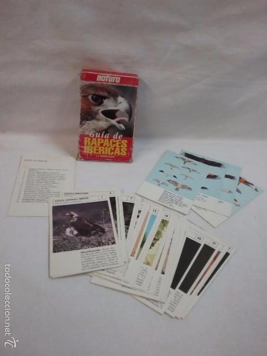 BARAJA DE CARTAS GUIA DE RAPACES IBÉRICAS - POR J.L. RODRÍGUEZ - NATURA - COMPLETA (Juguetes y Juegos - Cartas y Naipes - Otras Barajas)