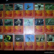 Barajas de cartas: 21 CARTAS TOP TRUMPS ANIMALES HAPPY MEAL MCDONALD. Lote 58408864