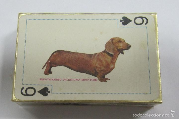 Baraja De Cartas Famous Dogs Of The World Pok Buy Poker Cards At