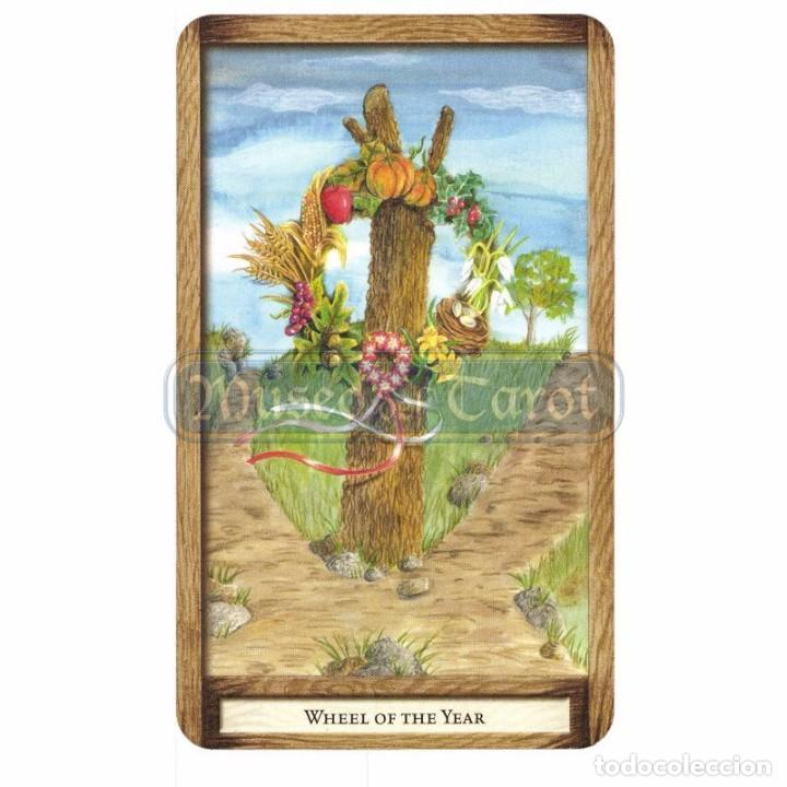 Barajas de cartas: Tarot Well Worn Path (Set) (40 Cartas + Bolsa) (EN) (Llewellyn) - Foto 4 - 75195215