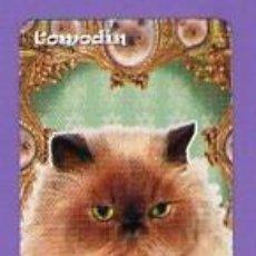 Mazzi di carte: COMODÍN GATO CARTA NAIPE PATITO FEO HERACLIO FOURNIER 2010 IDS ARG. Lote 78306069