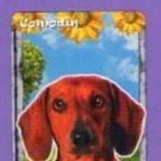 Mazzi di carte: COMODÍN PERRO CARTA NAIPE PATITO FEO HERACLIO FOURNIER 2010 IDS ARG. Lote 78306161