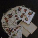 Barajas de cartas: BARAJA DOMINO NIÑOS JUGANDO - COMPLETA 28 CARTAS FICHA DOMINO - MUY ANTIGUO- VER FOTOS - (V-12.856). Lote 105191991