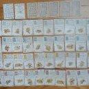 Barajas de cartas: BARAJA GEOGRÁFICA DE ESPAÑA. 1870-1877. Lote 126480671