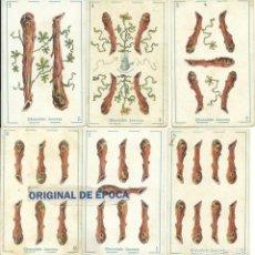 Barajas de cartas: (CHO-482)BARAJA CHOCOLATE JUNCOSA - LOTE DE 5 NAIPES. Lote 136466342