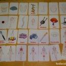 Barajas de cartas: BARAJA DE CARTAS INFANTIL. PARTES DEL CUERPO HUMANO, SUS FUNCIONES. ALEMANIA. 90GR. Lote 156002098