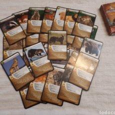 Mazzi di carte: BARAJA CARTAS DESAFÍOS DE LA NATURALEZA DE BIOVIVA CARNÍVOROS. Lote 158584790