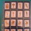 Barajas de cartas: HIJA DE B. FOURNIER-BURGOS. BARAJA INFANTIL. LEYENDA EN 4 DE OROS Y EN 4 DE COPAS. 40 CARTAS.. Lote 168225056