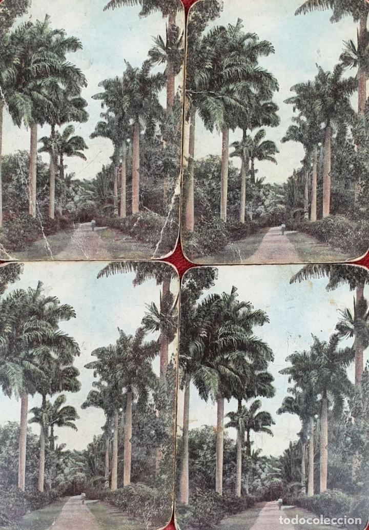 Barajas de cartas: JUEGO DE 48 CARTAS. PLAYING CARDS. ESTADOS UNIDOS. PAMNAMA SOUVENIR. 1908. - Foto 8 - 176238189