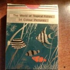 Barajas de cartas: BARAJA CARTAS DE PÓKER. LOS PECES TROPICALES, 54 IMÁGENES TROPICAL FISHES NUEVA PRECINTADA. Lote 193449281