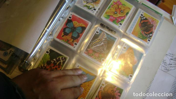 Barajas de cartas: BARAJAS DE LA COLECCION completa DE FAMILIAS DE MAGA VER FOTOS Y DESCRIPCION - Foto 2 - 207129138