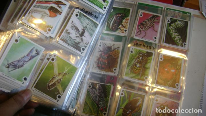 Barajas de cartas: BARAJAS DE LA COLECCION completa DE FAMILIAS DE MAGA VER FOTOS Y DESCRIPCION - Foto 3 - 207129138