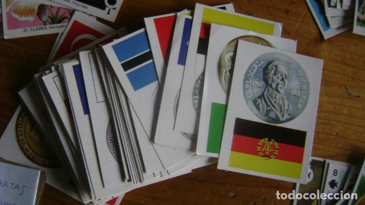 Barajas de cartas: BARAJAS DE LA COLECCION completa DE FAMILIAS DE MAGA VER FOTOS Y DESCRIPCION - Foto 7 - 207129138