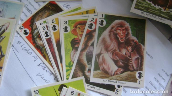 Barajas de cartas: BARAJAS DE LA COLECCION completa DE FAMILIAS DE MAGA VER FOTOS Y DESCRIPCION - Foto 12 - 207129138