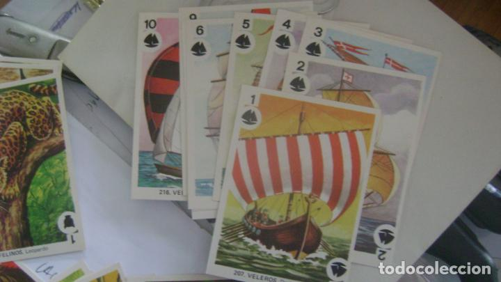 Barajas de cartas: BARAJAS DE LA COLECCION completa DE FAMILIAS DE MAGA VER FOTOS Y DESCRIPCION - Foto 15 - 207129138