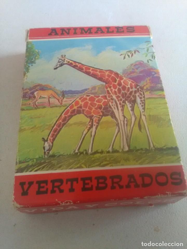 BARAJA DE CARTAS .H,FOURNIER,VICTORIA,1968.ANIMALES VERTEBRADOS.,SIN USAR.55 CART (Juguetes y Juegos - Cartas y Naipes - Barajas Infantiles)
