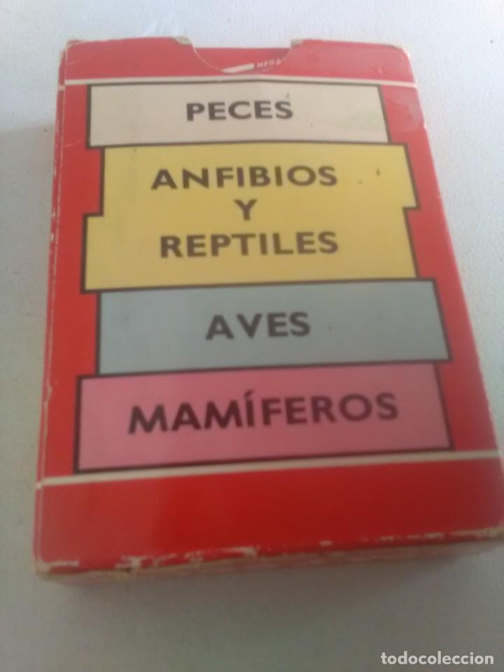 Barajas de cartas: BARAJA DE CARTAS .H,FOURNIER,VICTORIA,1968.ANIMALES VERTEBRADOS.,SIN USAR.55 CART - Foto 2 - 218506471