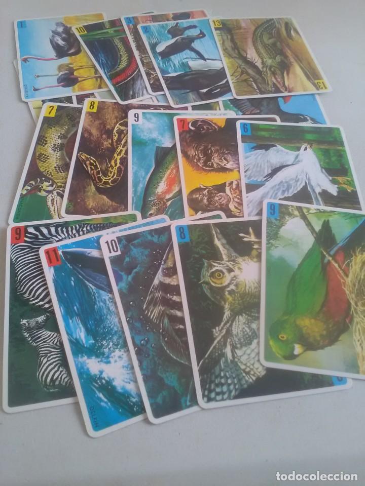 Barajas de cartas: BARAJA DE CARTAS .H,FOURNIER,VICTORIA,1968.ANIMALES VERTEBRADOS.,SIN USAR.55 CART - Foto 4 - 218506471