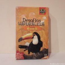 Barajas de cartas: JUEGO DE CARTAS BIOVIVA. DESAFIOS NATURALEZA. AVES.. Lote 219679161