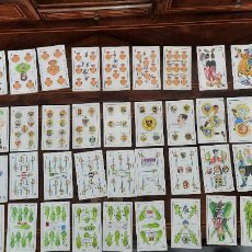 Barajas de cartas: BARAJA DE CARTAS DE FUTBOL CHOCOLATES ORTHI SOBRE 1920 COMPLETA 48 NAIPES. Lote 256157870