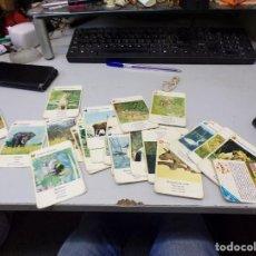 Barajas de cartas: BARAJA CARTAS DE ANIMALES JUEGOS EDUCA HAY 33 CARTAS ESTADO USADO. Lote 270873398