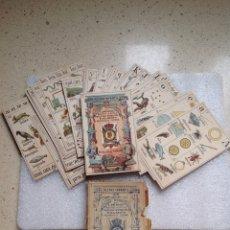 Barajas de cartas: BARAJA RECREO INFANTIL.ANTIGUO JUEGO NAIPES INSTRUCTIVOS (COMPLETO) JAIME MARGARIT. Lote 277045053
