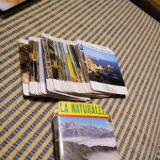 Barajas de cartas: BARAJA DE CARTAS LA NATURALEZA. FOURNIER. AÑOS 70. Lote 294105343