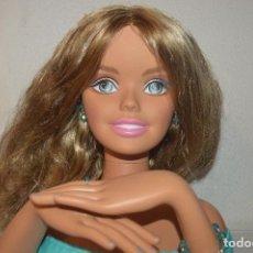 Barbie y Ken: BUSTO MUÑECA BARBIE PARA PEINAR TAMAÑO GRANDE CON BRAZOS PFS. Lote 62531804