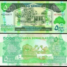 Banconote internazionali: SOMALILANDIA (SOMALILAND, SOMALIA). 5000 SHILLINGS 2011. S/C. PICK 21 A.. Lote 261791585