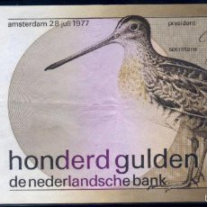 Billetes extranjeros: HOLANDA : 100 GULDEN (FLORINES) 1977 PICK 97 EBC/EBC+. Lote 61059963
