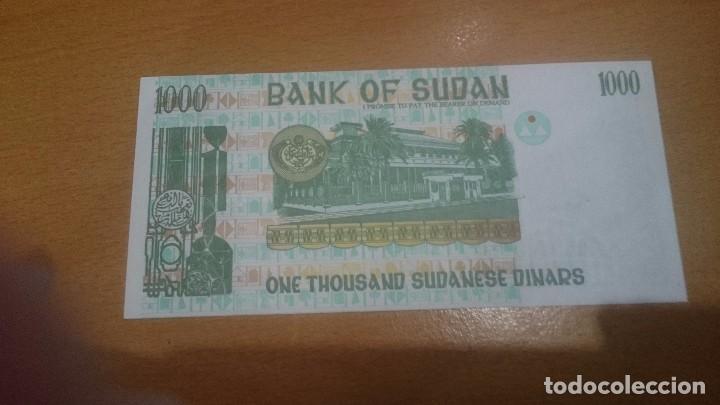 Billetes extranjeros: BILLETE DE SUDAN DE 1000 DINARS AÑO 1996 CALIDAD SC NICK 59 - Foto 2 - 65993902