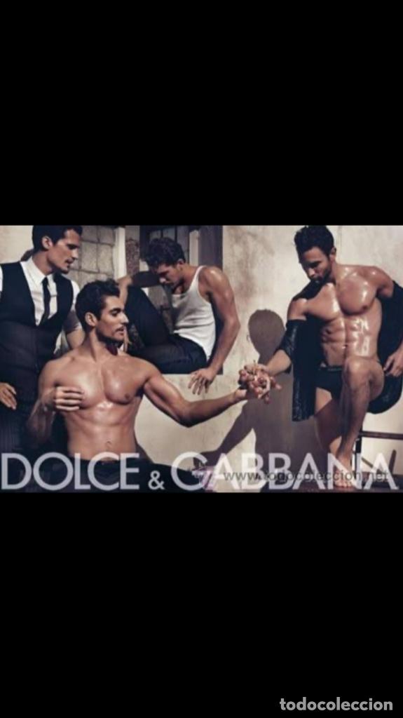Joyeria: Brazalete Original DG Dolce Gabbana - Foto 11 - 181197997