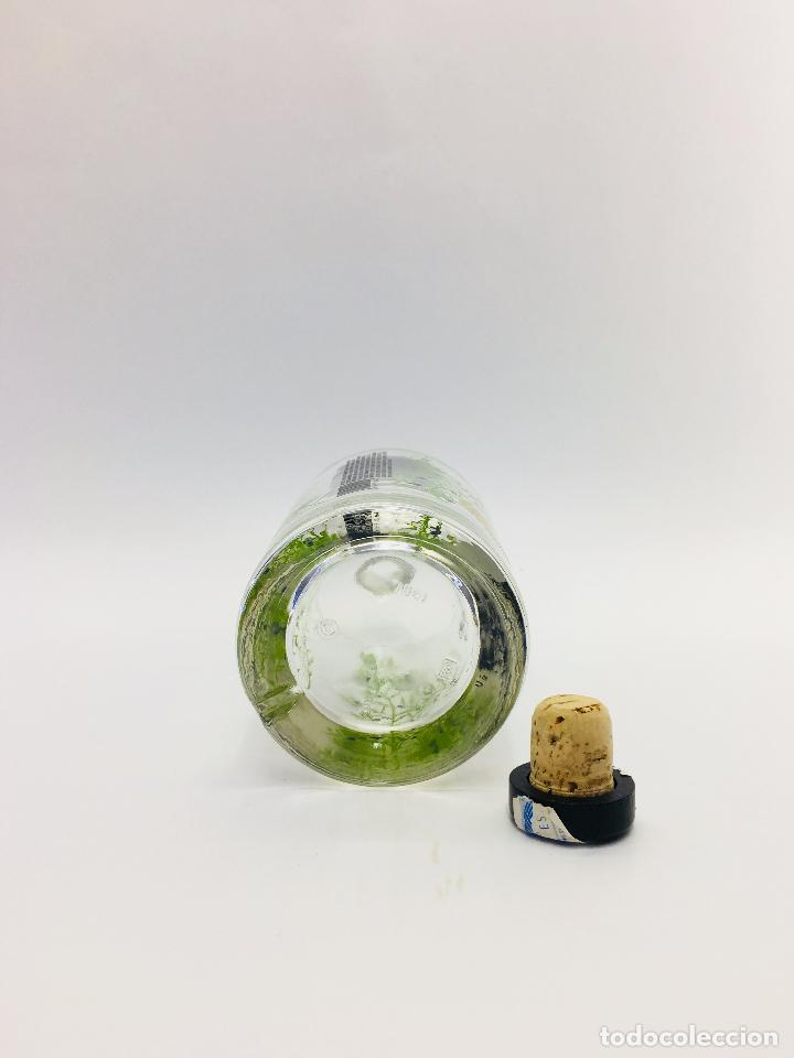Botellas antiguas: BOTELLA VACIA DE GINEBRA LEVEL GIM 70 CL. - Foto 6 - 120001978