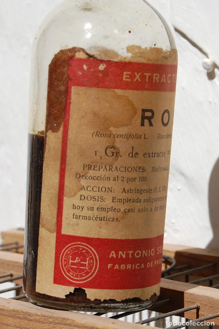 Botellas antiguas: FRASCO DE FARMACIA EXTRACTO FLUIDO DE ROSA LAB SERRA CON CONTENIDO // ALTO 13 CM - Foto 3 - 130118791
