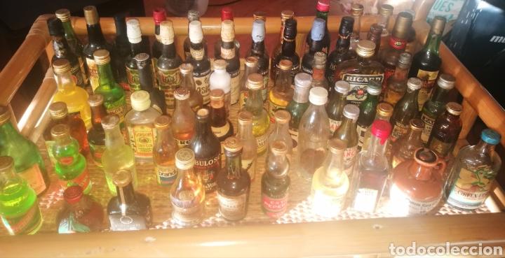 ESTUPENDO LOTE DE + DE 70 BOTELLINES ANTIGUOS TODOS LLENOS (Coleccionismo - Botellas y Bebidas - Botellas Antiguas)