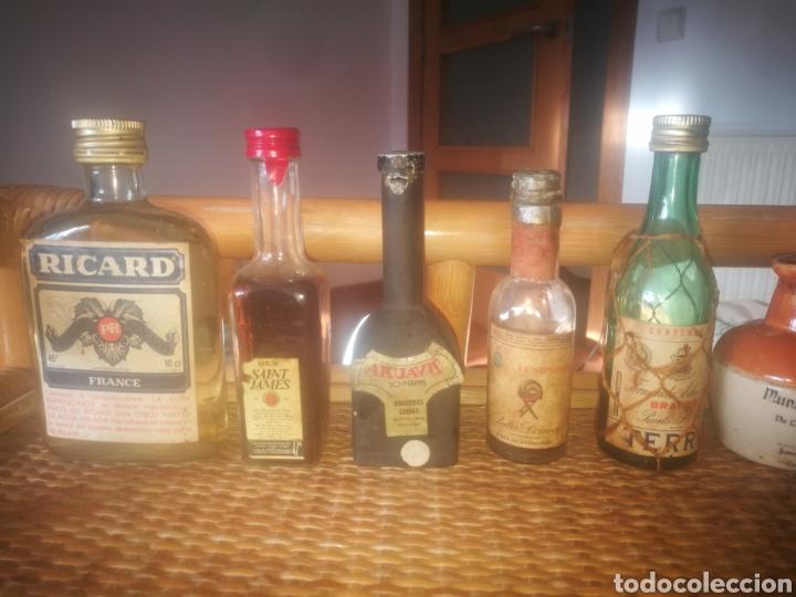 Botellas antiguas: Estupendo lote de + de 70 botellines antiguos todos llenos - Foto 4 - 151845360