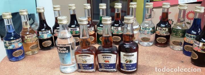 18 BOTELLITAS BOTELLIN MARIE BRIZARD (Coleccionismo - Botellas y Bebidas - Botellas Antiguas)