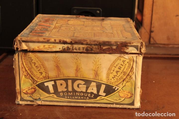 Cajas y cajitas metálicas: Antigua y rarisima caja de galletas maria, caja de metal galletas trigal , dominguez, salamanca - Foto 2 - 220772386