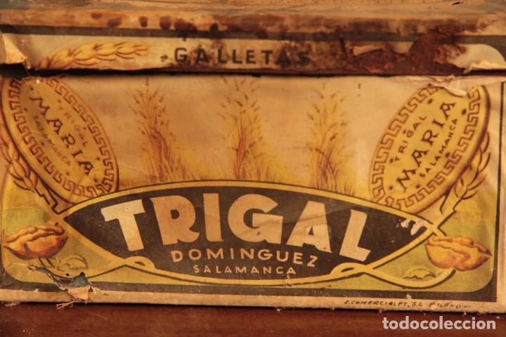 Cajas y cajitas metálicas: Antigua y rarisima caja de galletas maria, caja de metal galletas trigal , dominguez, salamanca - Foto 3 - 220772386