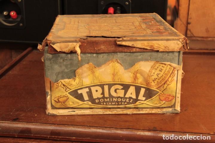 Cajas y cajitas metálicas: Antigua y rarisima caja de galletas maria, caja de metal galletas trigal , dominguez, salamanca - Foto 5 - 220772386