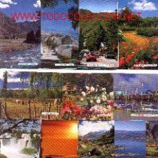 Coleccionismo Calendarios: 11-PAISA184. LOTE DE 20 CALENDARIOS DIF. PAISAJES ARGENTINA. Lote 6453649