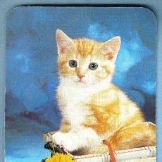 Coleccionismo Calendarios: CALENDARIO 2001 - BOUTIQUE BURGOS. Lote 11880429
