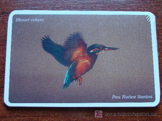 9 CALENDARIOS DE FOTOGRAFÍA DE AVES - PÁJAROS. AÑO 2007. PRECINTADOS. (Coleccionismo - Calendarios)