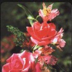 Coleccionismo Calendarios: CALENDARIO TEMA FLORES 2006. Lote 13498319