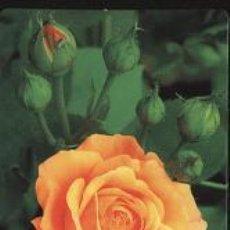 Coleccionismo Calendarios: CALENDARIO TEMA FLORES 2006. Lote 13498331